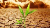 En el primer foro de su tipo, en financiamiento verde, realizado en París, Francia y señalando un cambio en la política climática global, 24 países en desarrollo que representan el […]