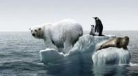 PARÍS COP21 Por. Luis Enrique Velasco Aunque algunos catastrofistas aseveran que ya no importa lo que se haga porque el cambio climático ya es irreversible, la Organización de las Naciones […]