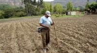 El Estado de México es la única entidad del país donde la Semarnat descentralizó la atribución de otorgar los permisos de aprovechamiento forestal maderable, con base en el Convenio de […]