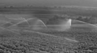 No hay seguridad alimentaria sin seguridad hídrica, dado que la escasez de agua y su contaminación ponen en riesgo cada vez más a los principales sistemas de producción de alimentos […]