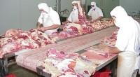 Se dio a conocer que un mexicano come en promedio 60 kilogramos de carne en un año, de los cuales 27 son de pollo, 17 de res y 16 de […]