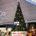 La agencia de autotransporte EB Media y Paramount Pictures México, lleva la celebración de la temporada navideña a la Central del Norte de la Ciudad de México con un árbol […]