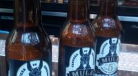 Se realizó una presentación de la cerveza Mula de 5s, bebida elaborada a base de jengibre, que se caracteriza por ser más un aditamento para la cokteleria, que ser de […]