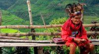 Conocer los procesos de adivinación, sanación, reparación y propiciación en el contexto del tradicional Chaman o Brujo curandero mexicano, es uno de los objetivos principales de Antonella Fagetti Spedicato, profesora […]