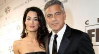 * Regresan los vampiros * Anahí ya tiene anillo * George Clooney, cazado * Cincuetonas cumpleañeras * Gastadora Paris Hilton. *** Muchas sorpresas en la información esta semana, una de […]