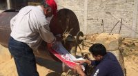 La Procuraduría Federal de Protección al Ambiente (PROFEPA) clausuró de manera total temporal dos aserraderos en el municipio de Zitácuaro, Michoacán, los cuales realizaban actividades de aserrío sin contar con […]