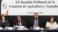 La Comisión de Agricultura, que preside el senador Manuel Cota Jiménez, aprobó un exhorto a las Secretarías de Agricultura, Ganadería, Desarrollo Rural, Pesca y Alimentación (SAGARPA), y de Medio Ambiente […]
