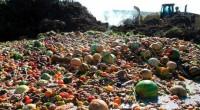 De acuerdo al Banco Mundial el mundo pierde o desechos de una cuarta parte de los alimentos que produce, según la última edición de Food Price Watch trimestral del BM […]