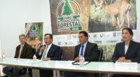 Se dio a conocer la realización del Foro Internacional Forestal Durango 2018, iniciativa apoyada por el gobierno del estado, instituciones académicas y el sector forestal de la entidad, así como […]