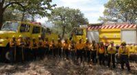 La Comisión Nacional Forestal (CONAFOR) dio a conocer que reconocerá a brigadas de combatientes de incendios forestales y técnicos especializados en el manejo del fuego de todo el país. El […]