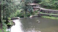 POR: Mariana Elisa Cerqueda Segundo Aunque pueda ser difícil de creer, en plena Ciudad de México existe un bosque, un río de aguas limpias y un grupo de comuneros que […]