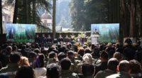 La Comisión Nacional de Áreas Naturales Protegidas (CONANP) celebró 100 años de conservación de la naturaleza a través de la implementación de las Áreas Naturales Protegidas (ANP). Actualmente, este esquema […]