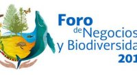 Tras deliberar los diálogos de Alto Nivel en la décima tercera reunión de la Conferencia de las Partes (COP 13), se dio a conocer que los ministros y otros jefes […]