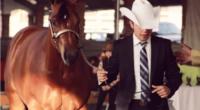 Con la finalidad de seguir fortaleciendo la crianza de caballos en México, la séptima edición de Copa Criadores se llevará a cabo del 28 de febrero al 3 de marzo […]