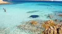CALIDAD DEL AGUA EN ZONAS COSTERAS Y MARINAS En México, podemos disfrutar de playas muy diversas, desde las del Caribe con sus grandes barreras arrecifales coralinas hasta las del Pacífico […]