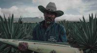 El mezcal del estado de Oaxaca, al sureste de México, se posiciona cada vez de mejor manera en el mundo. En dicha entidad se produce el 92% de esta bebida […]