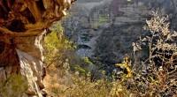 Bajo un sol que cae a plomo, en los agrestes cerros que rodean el Valle de Tlacolula, en el estado de Oaxaca al sureste de México, se abren cuevas de […]