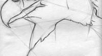 Águila. Lápiz sobre marquilla. 24.5 x 32.0 centímetros. La Naturaleza envolvente queda sintetizada en las banderas nacionales -con mayor vivacidad o simbolismo-, según el momento histórico patrio para cada una. […]
