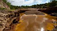 La mina Buena Vista del Cobre, perteneciente al Grupo México, el más importante del ramo, en México, podría ser clausurada por el derrame de 40 mil metros cúbicos de sustancia […]