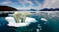 """""""Si uno perturba una parte del sistema, como es el Ártico, puede estar seguro de que verá los efectos en otros lugares"""", afirma el científico Piers Sellers, según información publicada […]"""