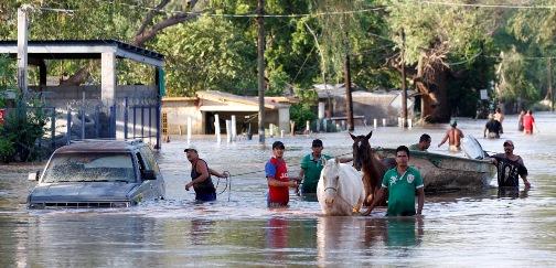Durante el periodo que abarca septiembre 2014 a agosto 2015 se han ejercido 1,495, 805,197 millones de pesos a través del Fondo Nacional de Prevención de Desastres (FONDEN) en la […]