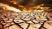 Luis Enrique Velasco Yépez Alrededor del 50 por ciento del territorio nacional está herido de muerte, casi agónico, a causa de la desertificación y el 75 por ciento del país […]