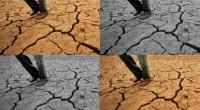 """En su mensaje, Ban Ki-moon, secretario general de la ONU, en el Día Mundial de Lucha contra la Desertificación y la Sequía, proclamó: """"No dejemos que se seque nuestro futuro"""" […]"""