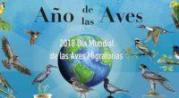 Ante el Día Mundial de las Aves Migratorias -12 de mayo-, que se celebra en la región norte de nuestro continente, se dio a conocer que éste es el único […]