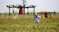 La agricultura ocupa la mayor proporción de tierra que usa el hombre en el mundo, la degradación del suelo fértil por esta actividad llega a ser de 24 millones de […]