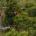 En 2018 se duplicará la población de guacamayas rojas liberadas en selvas nacionales, informó Rodolfo Raigoza Figueras, Director de Conservación de Grupo Experiencias Xcaret, quien dio a conocer que las […]