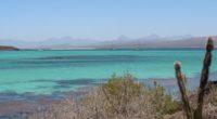 El Parque Nacional Bahía de Loreto, localizado en el Pueblo Mágico de Loreto, en el estado fronterizo de Baja California Sur (BCS), se caracteriza por su amplia variedad de ambientes […]