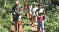 Durante la segunda sesión ordinaria el Comité de Fomento Económico de la delegación Milpa Alta anunció que con el propósito de detonar el potencial turístico, la activación económica y generar […]