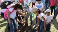 POR: Irma Eslava Mediante el Programa » Embellece Tu Ciudad» se han plantado 30 mil árboles acción que ha mejoran la calidad del aire y el paisaje urbano. Así lo […]