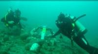 En el Departamento de Oceanografía Física del CICESE en Baja California, un equipo de científicos y modeladores está impulsando el aprovechamiento de energía a partir de corrientes marinas y de […]