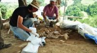 Dos entierros prehispánicos de entre 900 y mil años de antigüedad, fueron descubiertos por arqueólogos del Instituto Nacional de Antropología e Historia (INAH-Conaculta), dentro de un templo que forma parte […]