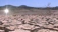 La Confederación Nacional Campesina (CNC) se pronunció por impulsar acciones que permitan revertir el proceso de degradación de suelos y aguas, y urgir a las dependencias federales y estatales relacionadas […]