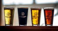 La marca de cerveza artesanal Wendlandt originaria de Ensenada, Baja California, celebra el Día Internacional de la Cerveza, compartió los 5 errores más comunes al beberla, con el objetivo de […]