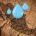 La escasez de agua en el mundo está incrementando la problemática social y económica, convirtiéndose en un riesgo global latente del que más de 2,100 millones de habitantes del planeta […]