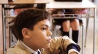 """La Secretaría de Educación Pública (SEP), en coordinación con Semarnat y la Asociación Civil, Reforestamos México, así como la empresa Kores de México, realizaron la premiación del certamen """"Maestro Ambientalista"""". […]"""