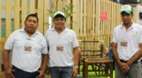 En su segunda edición, la convocatoriaCampusExpo Forestal tendrá 20 espacios para los prototipos universitarios que se exhibirán en la muestra forestal más importante del país, organizada por la Comisión Nacional […]