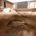 En la colonia La Otra Banda, al sur de la Ciudad de México (CDMX), en un predio colindante al decimonónico panteón San Rafael, especialistas del Instituto Nacional de Antropología e […]