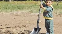 Ante la huella ambiental que diariamente deja cada institución y persona en el Planeta hacen necesario trabajar en programas de sustentabilidad que coadyuven en la mitigación, un ejemplo de ello […]