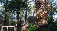 """En el Papalote • Museo del Niño, se tiene la presencia de la exposición """"Jardín de Mariposas"""" que es una innovadora exhibición temporal que buscará sorprender, asombrar y emocionar a […]"""