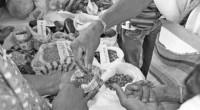 CAMPO DESARROLLO La Organización de las Naciones Unidas para la Alimentación y la Agricultura (FAO) diseñó, en colaboración con Gallup, empresa especializada en sondeos, un nuevo programa para la medición […]