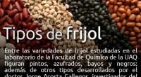 Un grupo de investigadores de la Universidad Autónoma de Querétaro (UAQ) y delInstituto Nacional de Investigaciones Forestales, Agrícolas y Pecuarias (INIFAP) trabaja en diferentes proyectos de investigacióncuyos resultados indican que […]