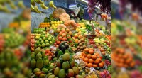 José Luis Hidalgo, director general de la marca Dole Food Package para México y Latinoamérica –del sector de frutas empacadas-, declaró a este reportero que buscarán impulsar que la cadena […]