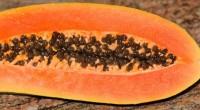 La fuente de la eterna juventud de las frutas podría estar en la cutícula, una delgada capa protectora que se encuentra en la superficie más externa, cuyo mecanismo molecular de […]