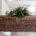 La empresa funeraria Grupo Gayosso anunció que los funerales con productos ecológicos en México han mostrado una tendencia a la alza al presentar un incremento del 20% anual, como lo […]
