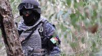 La misión ambiental de la División de Gendarmería de la Policía Federal, por medio de la coordinación y colaboración con la Comisión Nacional de Áreas Naturales Protegidas (CONANP), realizó un […]