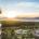Grupo Vidanta –desarrollador de resorts e infraestructuras turísticas y de entretenimiento en México y Latinoamérica– ha implementado una serie de programas e iniciativas que refuerzan su constante compromiso con la […]